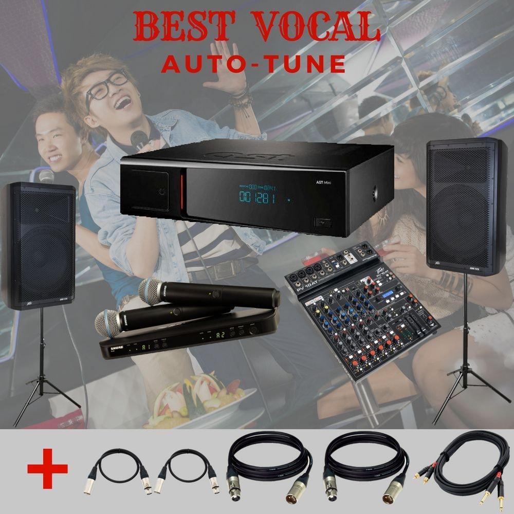 Караоке комплект Best Vocal (c Auto-Tune) купить в Москве